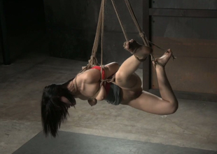 Hogtied heavy bottomed tattooed murky see red receives hung above the floor