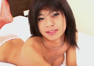 Ideal Sheboy Tits Stroke