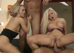 Mammal blondie Jenna Lovely gets nailed round group dealings